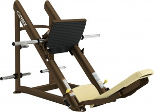 P.O. CYBEX - LEG PRESS PLATE LOADED