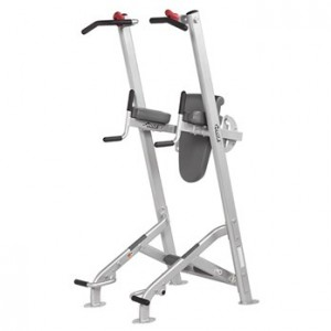 HOIST-HF-5962 FITNESS TREE